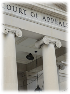 4 Reasons to Seek An Appeal
